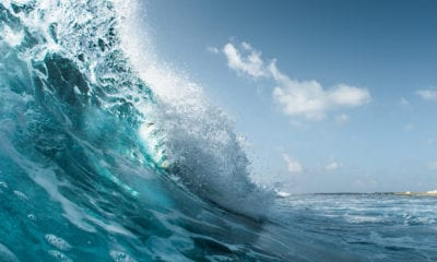Riding the Wave of Consolidation in the Vacation Rental Industry
