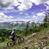 Fernie-Direct-StayFi-mountain-bike
